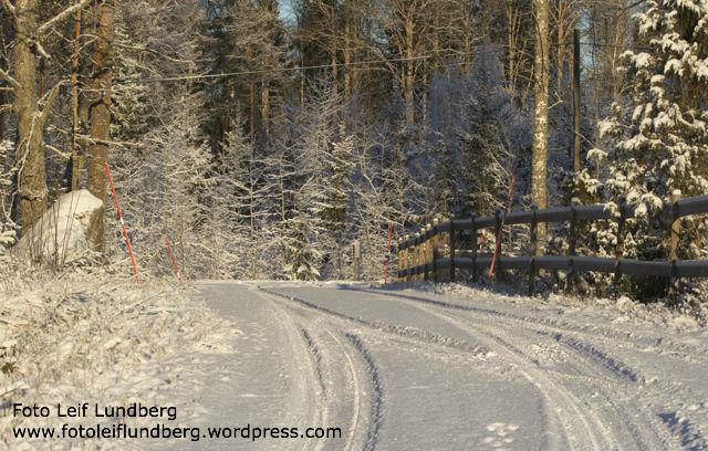 Nyfallen snö. Bilden är tagen i Rödjebro.